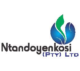 Ntandoyenkosi logo png